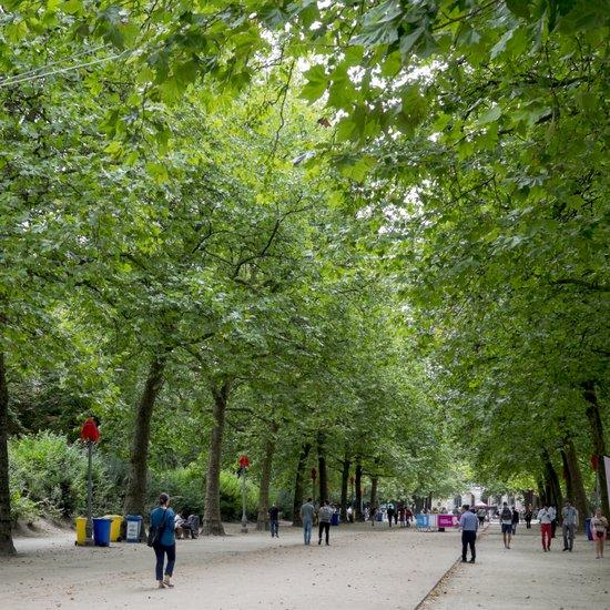 Brussel_Warandepark