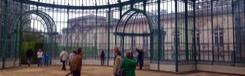 Koninklijke Serres in Laken 3 weken geopend
